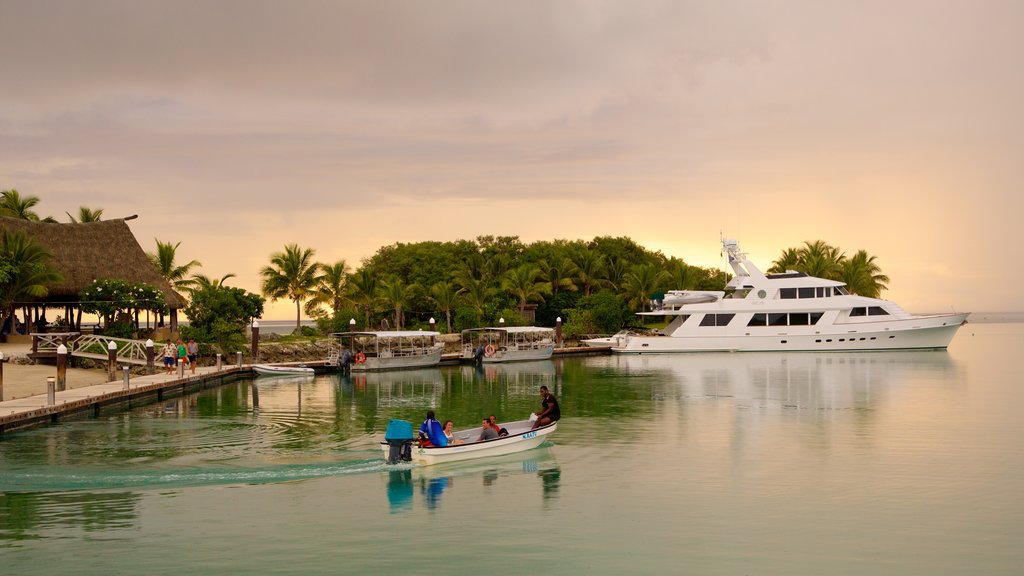 Musket Cove Marina featuring tropical scenes, a sunset and boating