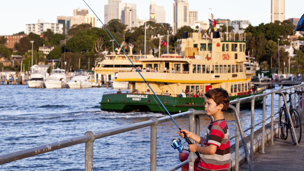 Balmain showing a city, fishing and a ferry
