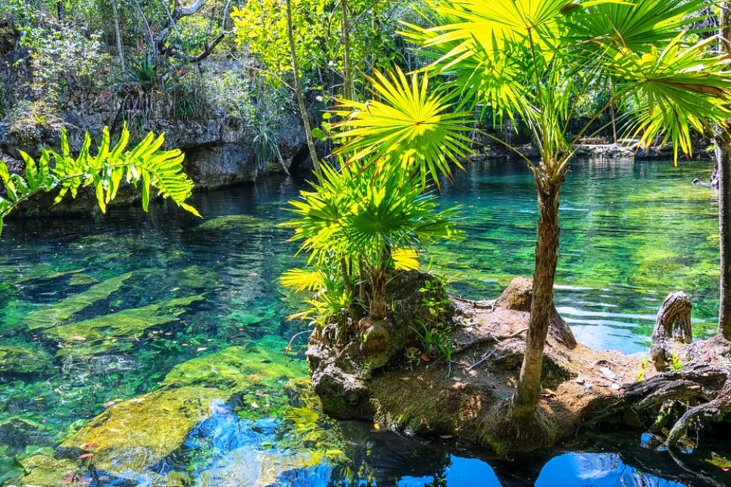 Nature-Mexico-Yucatan DP.jpg