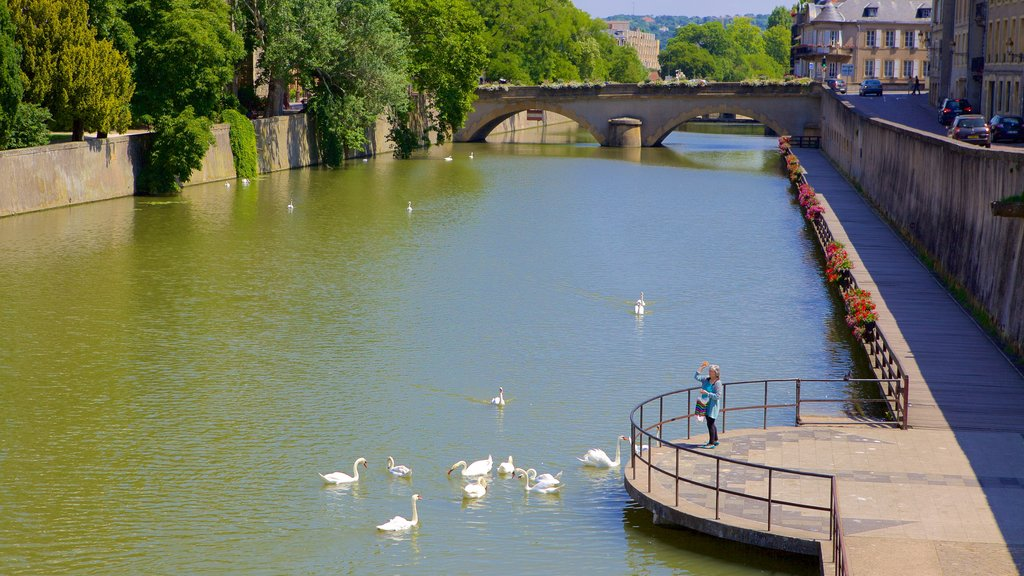 Metz which includes a river or creek and a bridge