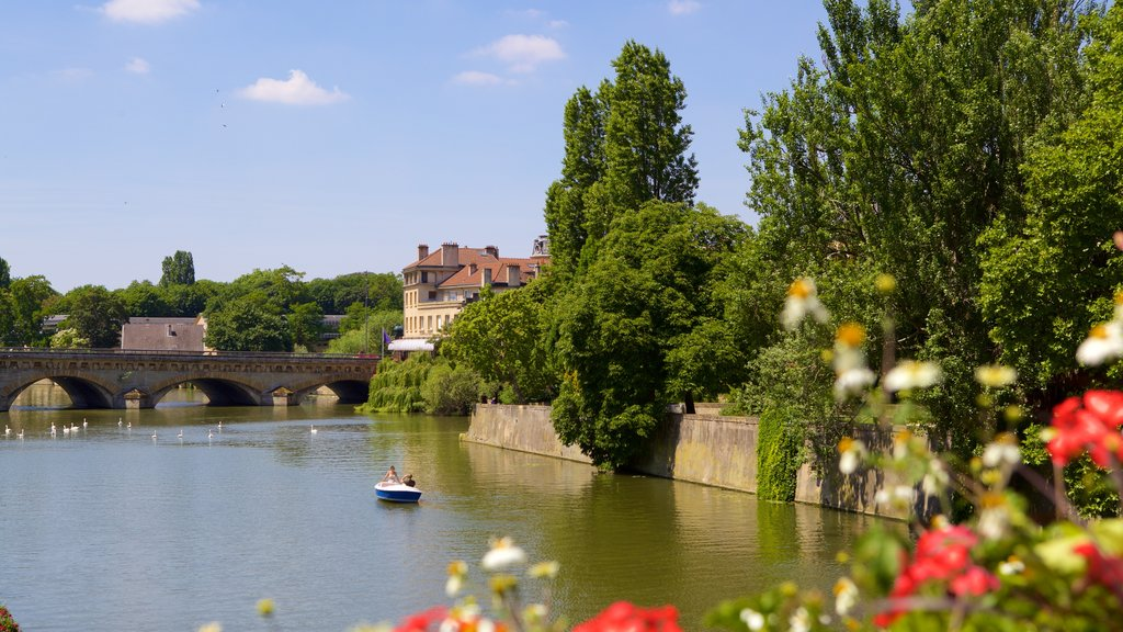 Metz featuring a river or creek, a bridge and flowers