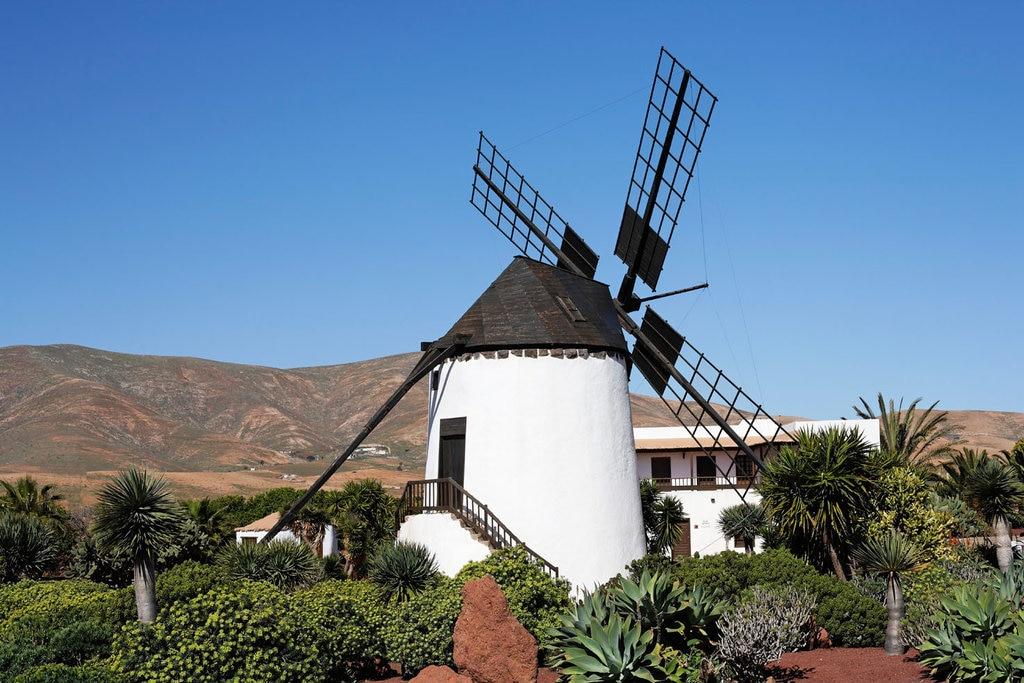 La Oliva.jpg