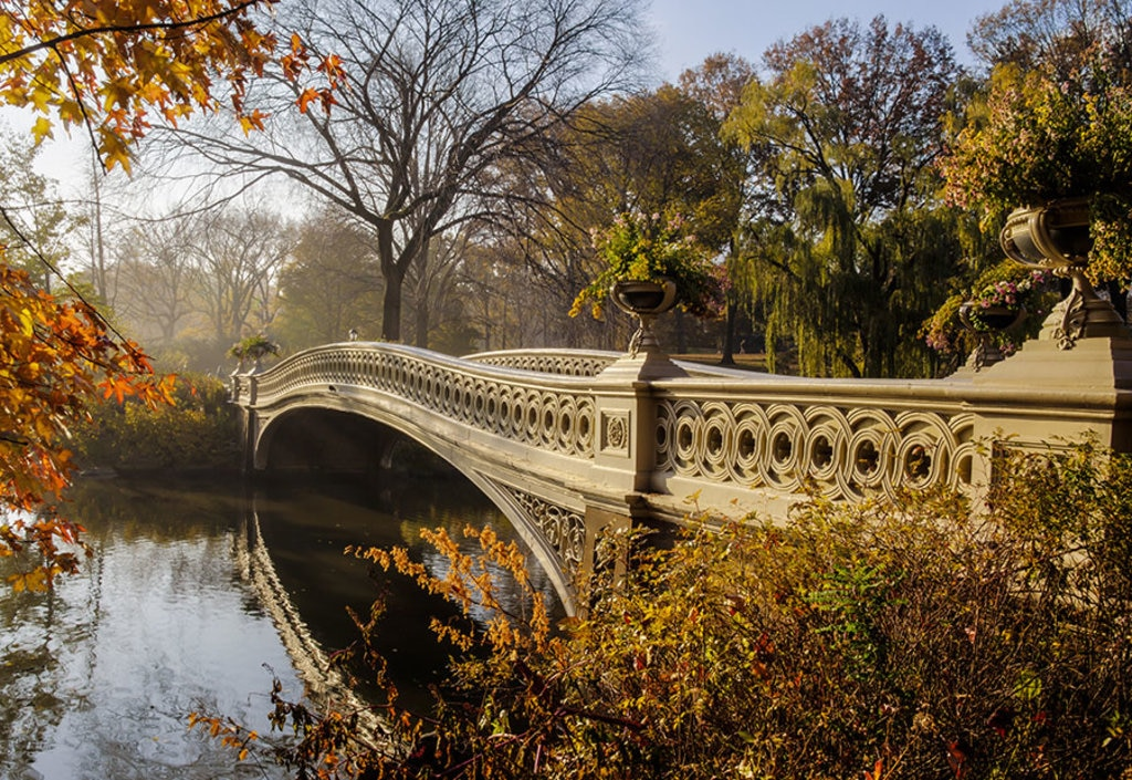 bridge_centralpark.jpg