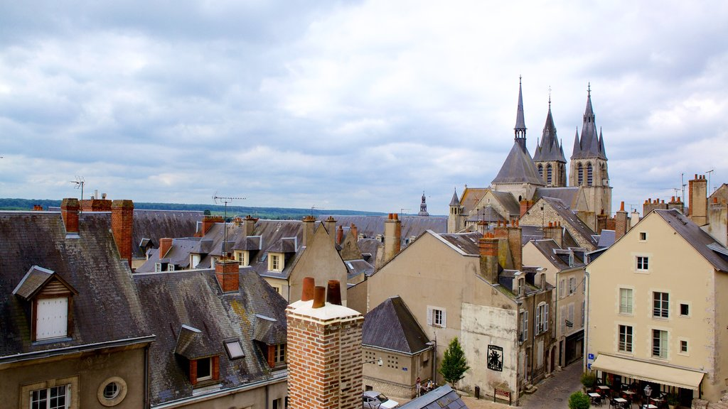 Blois showing a small town or village