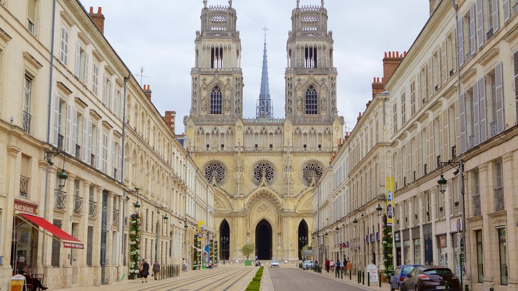 Orleans showing a church or cathedral, heritage elements and heritage architecture