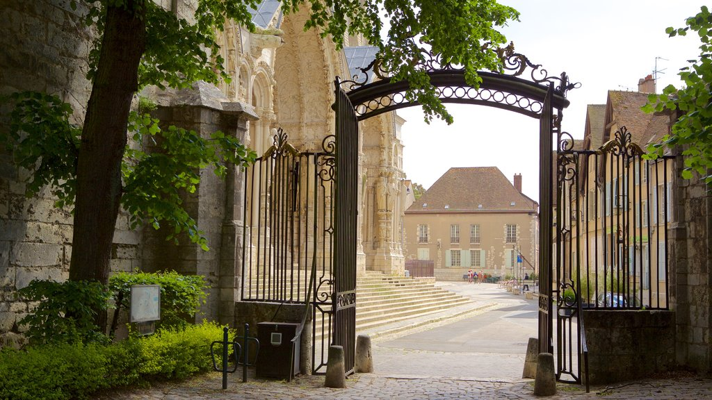 Chartres featuring heritage elements