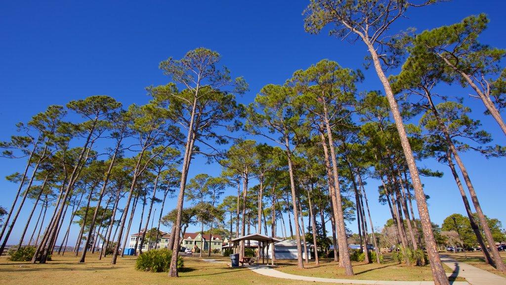 Fort Walton Beach showing a park