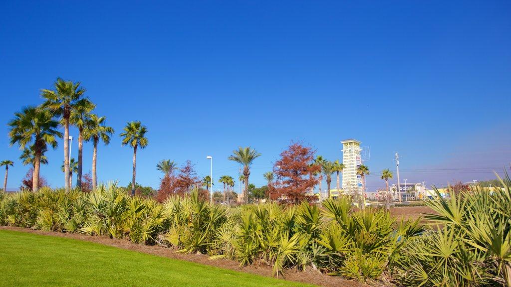 Pier Park mostrando um parque
