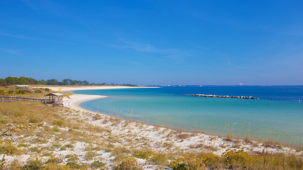 St. Andrews State Park featuring a sandy beach and tranquil scenes