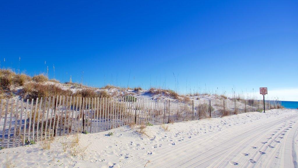 Grayton Beach State Park featuring a beach