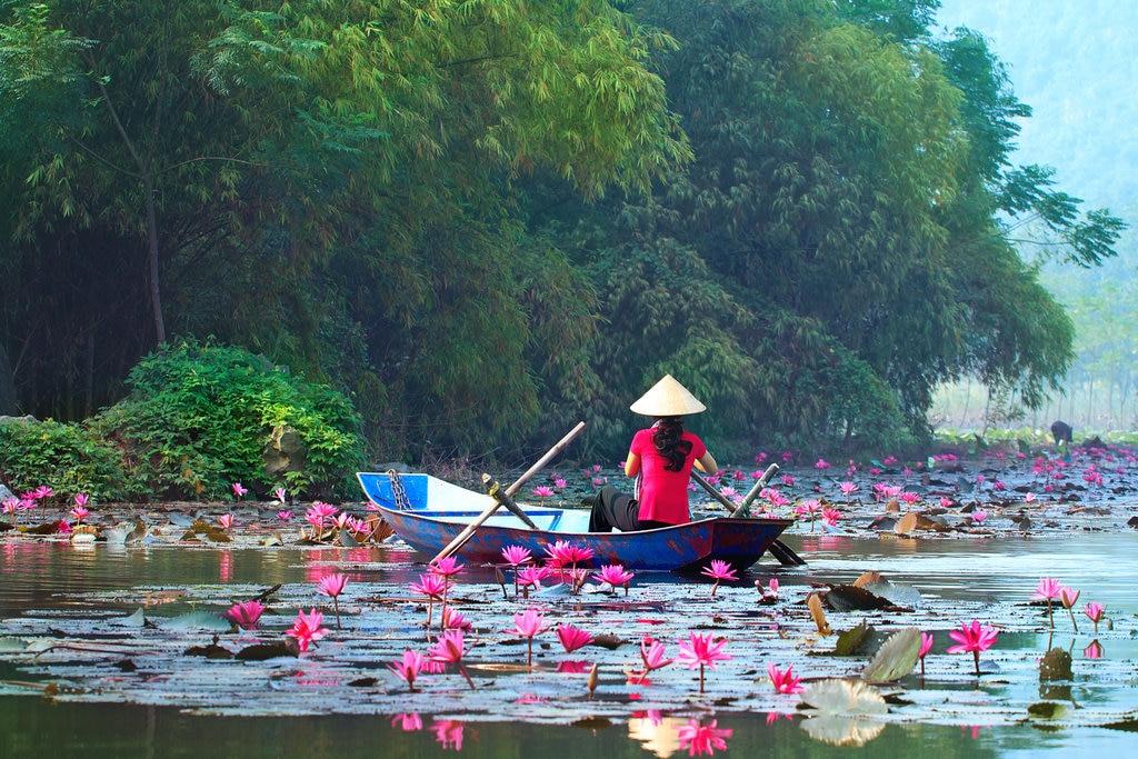 Hanoi en pagode Shutterstock.jpg