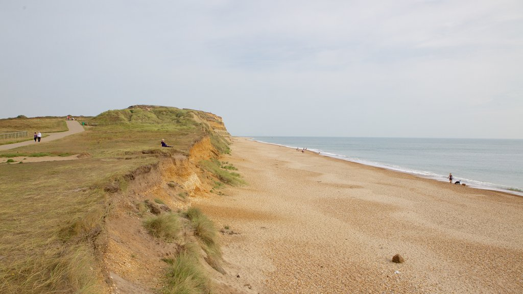 Hengistbury Head que incluye escenas tranquilas y una playa de guijarros