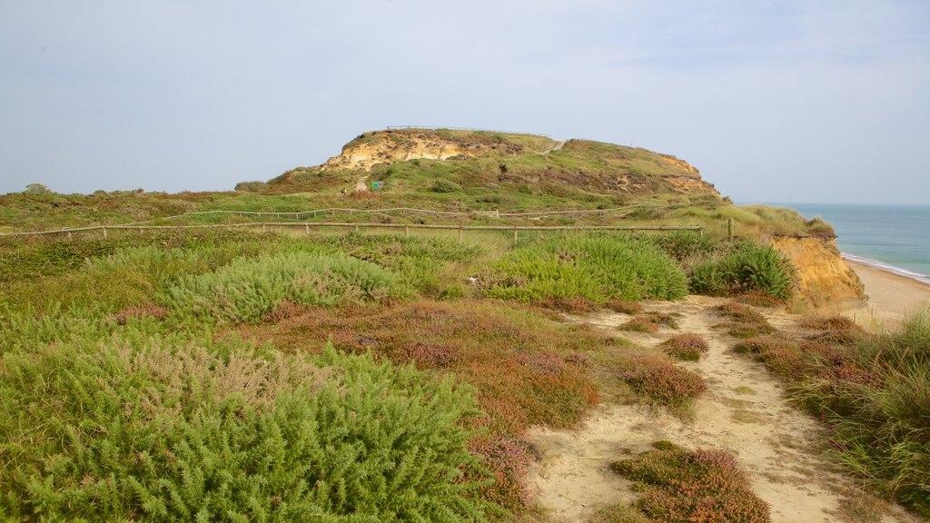 Hengistbury Head ofreciendo una playa de guijarros y escenas tranquilas