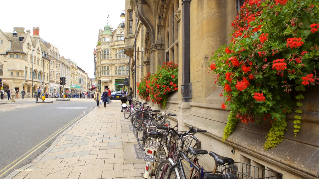 Oxford showing flowers and street scenes
