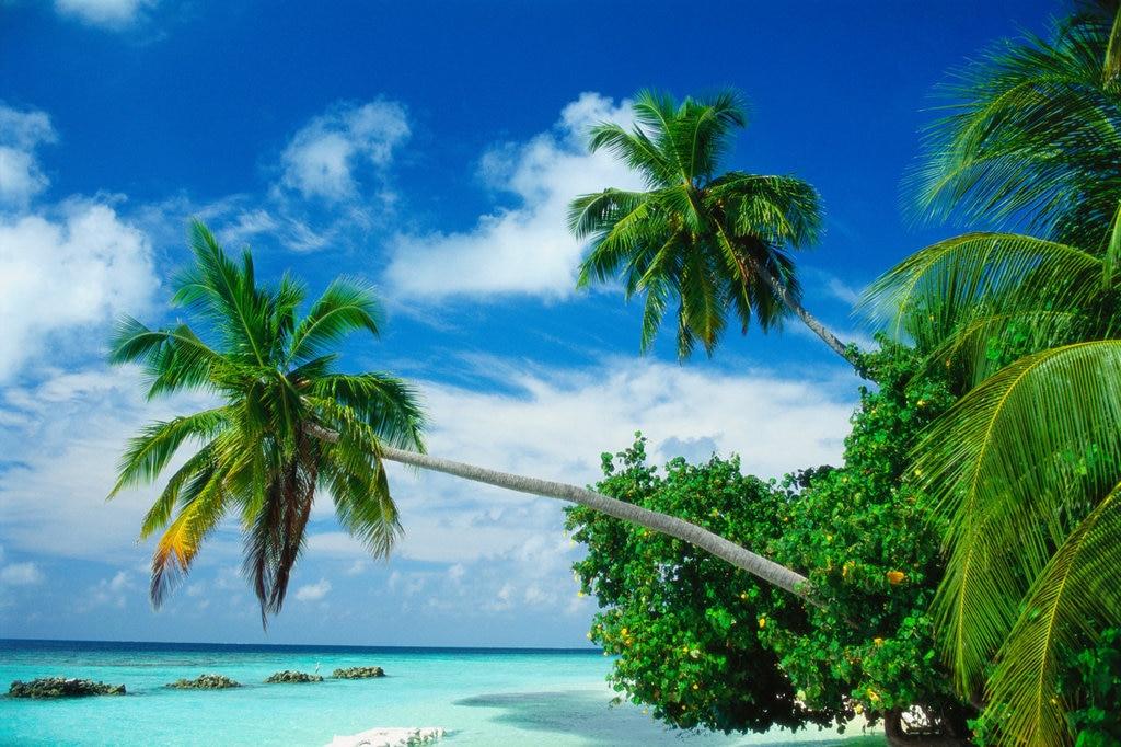Maldives Getty.jpg