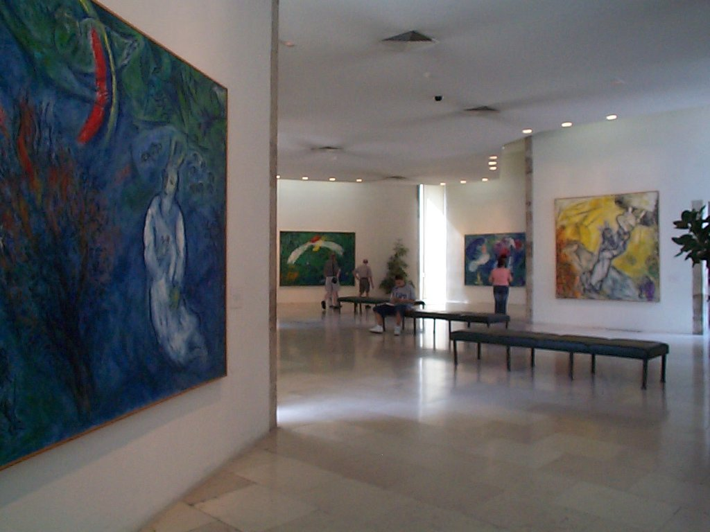 musée national marc chagall Janet McKnight CC BY 2.0.jpg