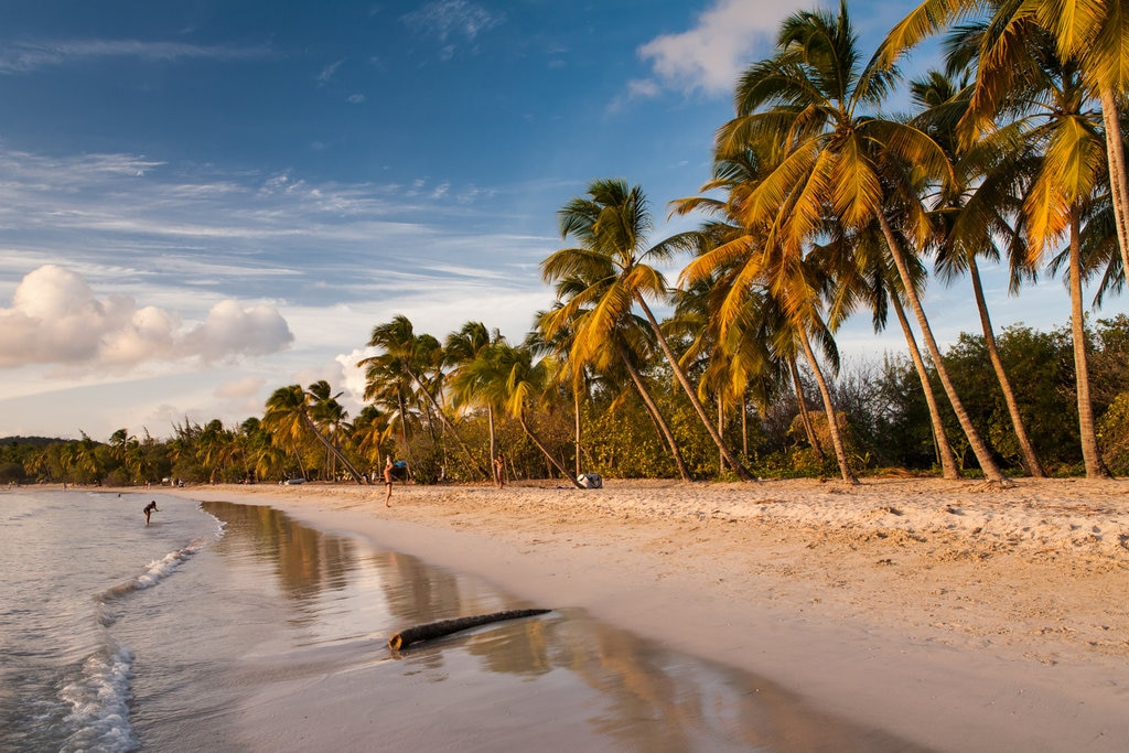Martinique Sainte-Anne Shutterstock.jpg