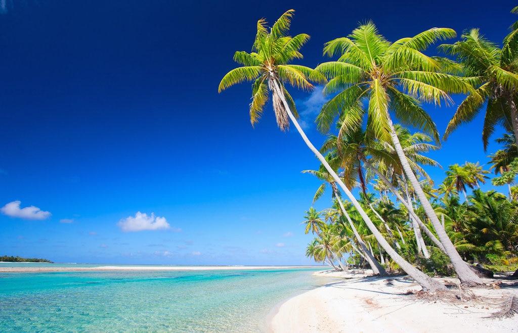plage palmier polynesie.jpg