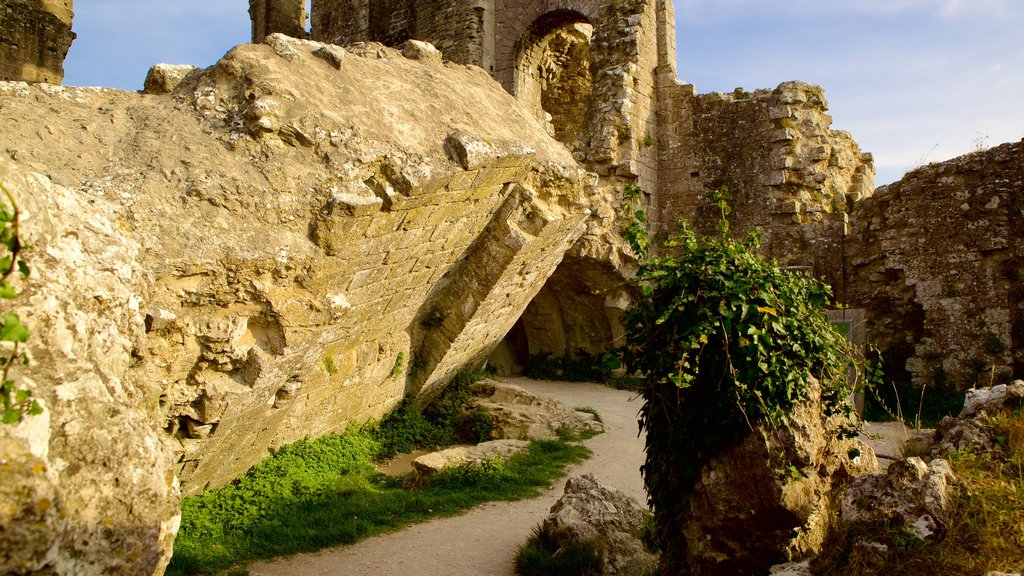 Corfe Castle showing a ruin and heritage elements