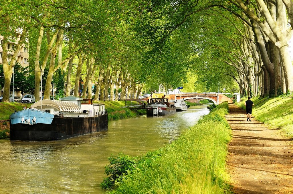 Toulouse Canal du Midi Shutterstock.jpg