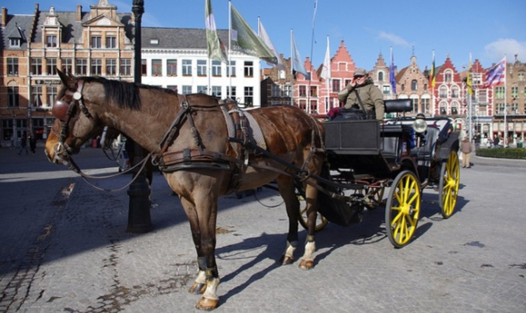 Bruges_family_horseride_Flickr.jpg