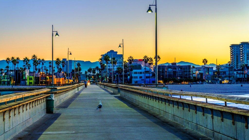 venice beach Jeff Turner CC BY 2.0.jpg