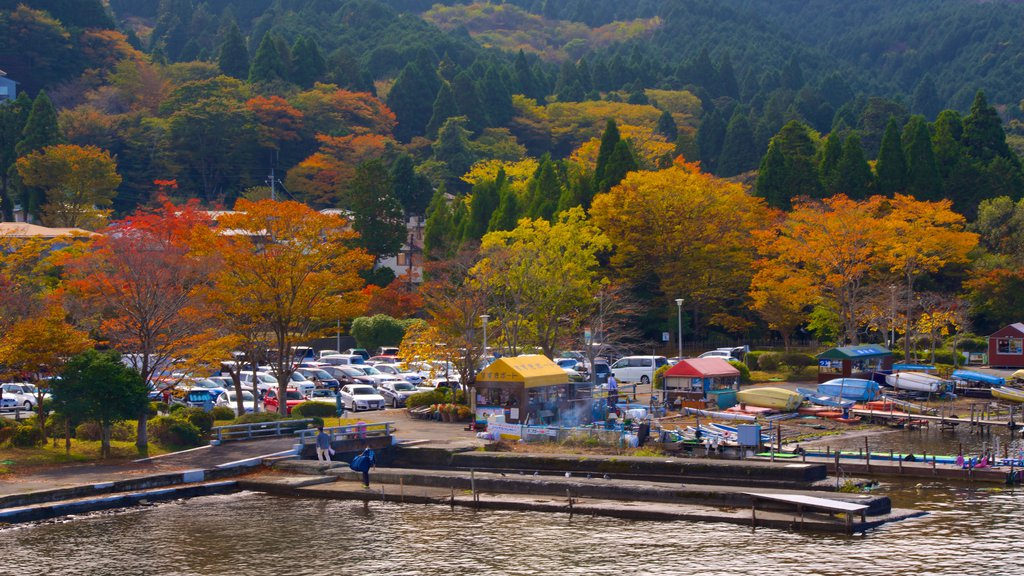 Lake Ashi featuring forests
