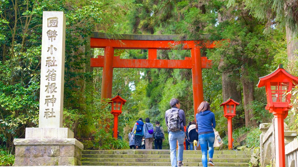 Hakone Shrine featuring heritage elements as well as a couple