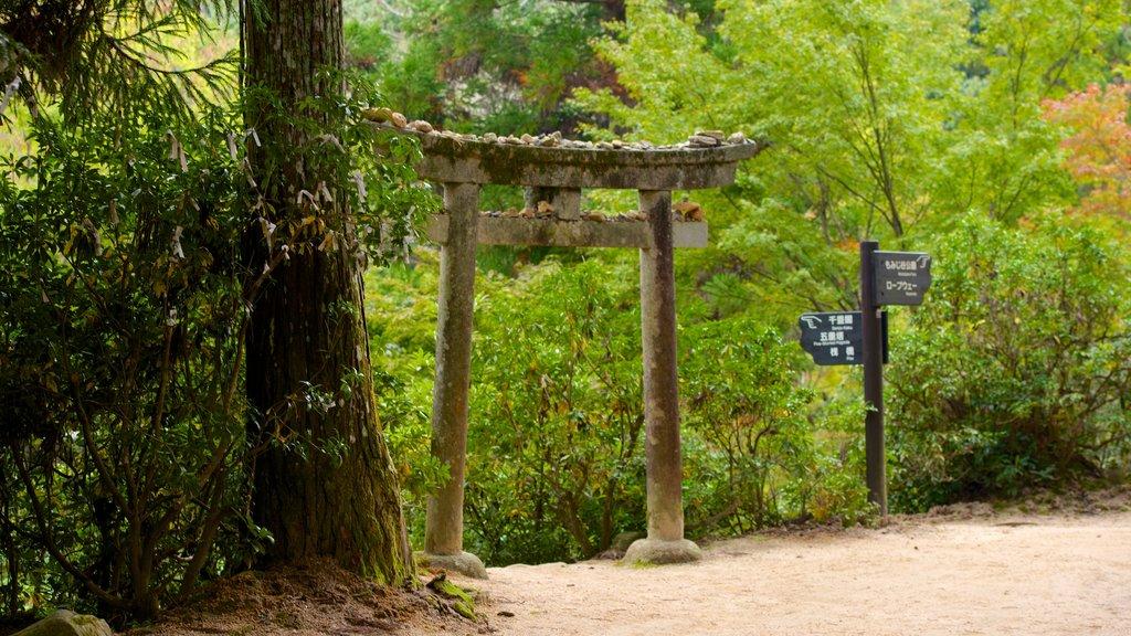 Momijidani Park showing a park