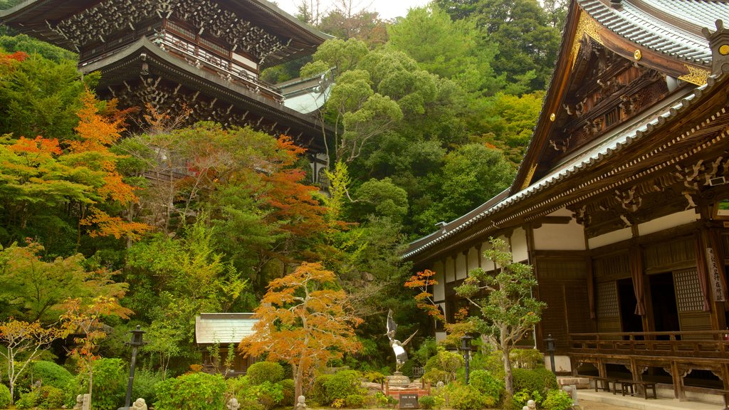 Daisho-in featuring a temple or place of worship and a park