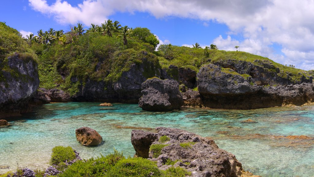 Limu which includes rugged coastline and colorful reefs