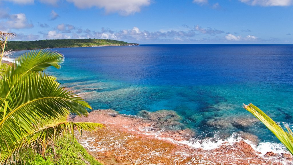 Niue showing coral