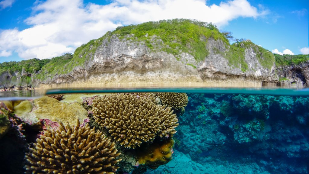Niue which includes coral