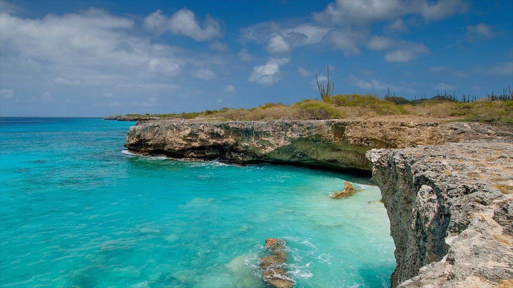 Bonaire ofreciendo costa escarpada