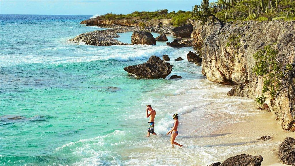 Bonaire mostrando snorkeling y costa escarpada y también un pequeño grupo de personas
