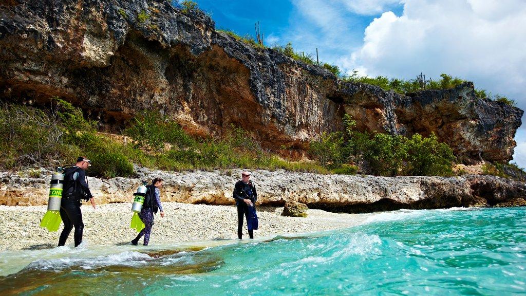 Bonaire que incluye costa escarpada y zambullida y también un pequeño grupo de personas