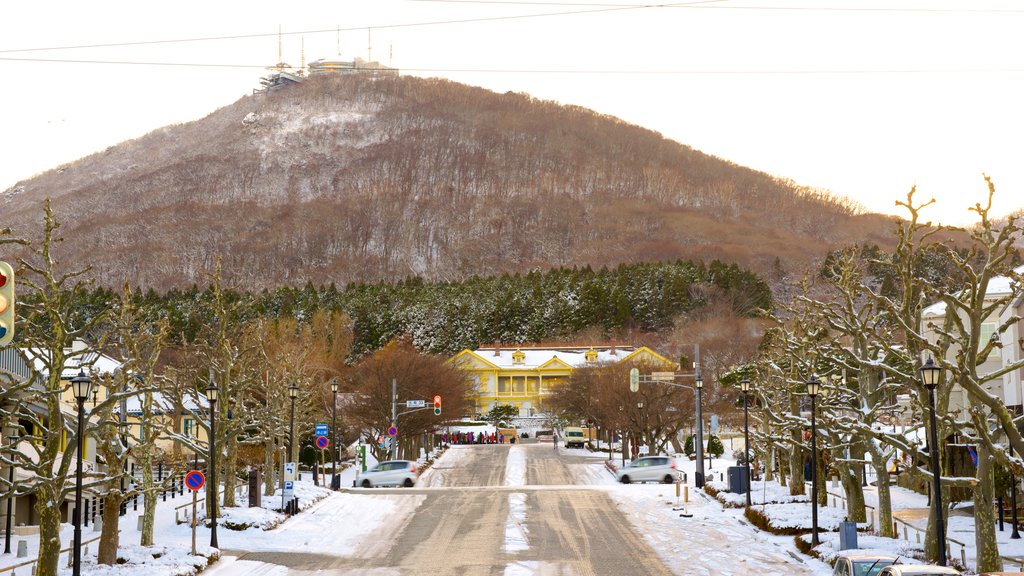 Mount Hakodate featuring mountains, snow and street scenes