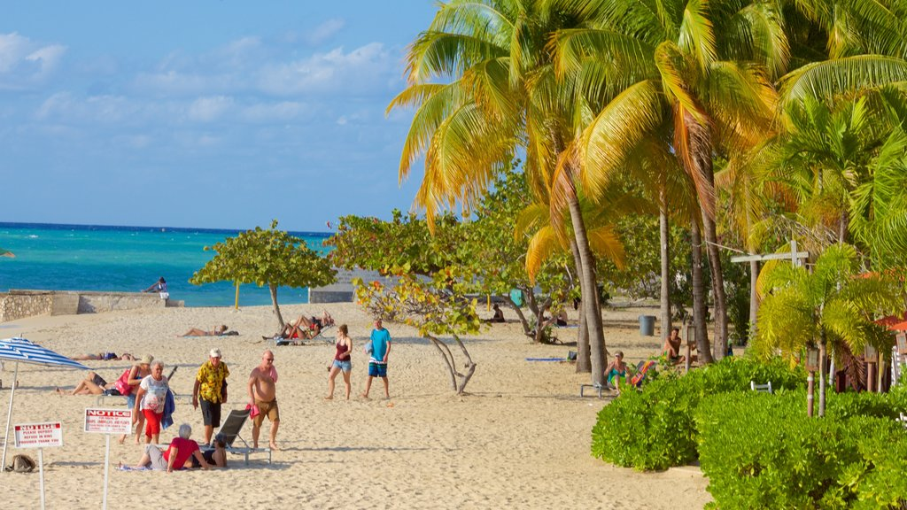 Doctor\'s Cave Beach which includes tropical scenes, a sandy beach and general coastal views