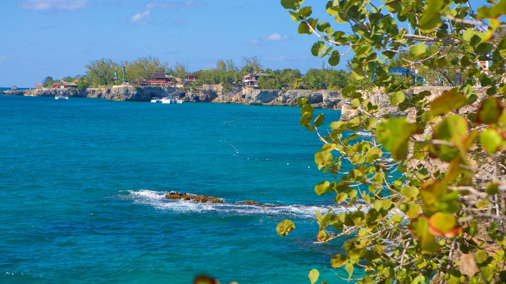 Negril Lighthouse showing general coastal views