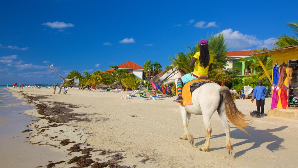 Seven Mile Beach which includes a beach and land animals as well as an individual femail