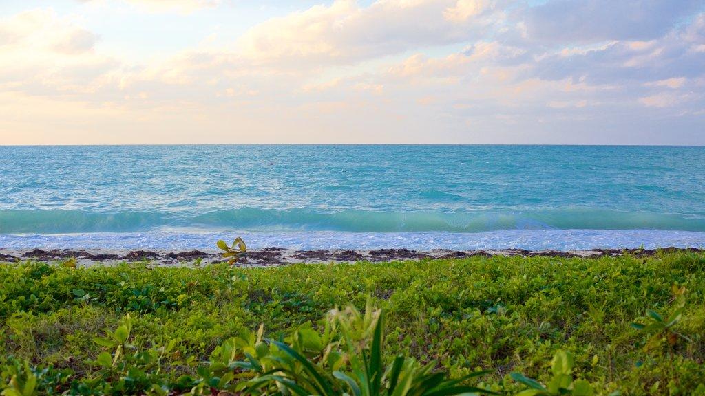 Negril featuring general coastal views