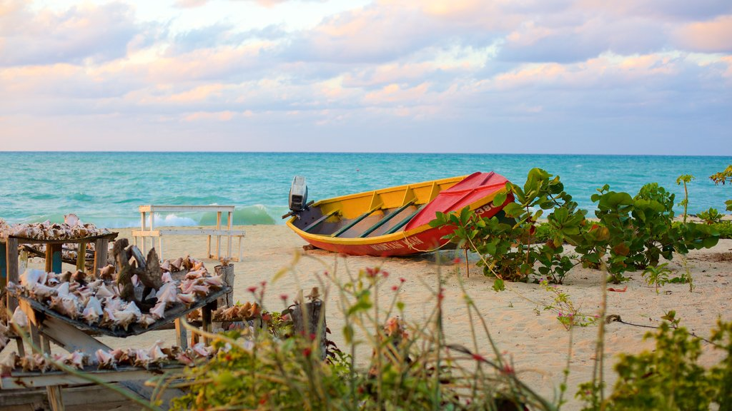 Negril showing outdoor art, a sandy beach and boating