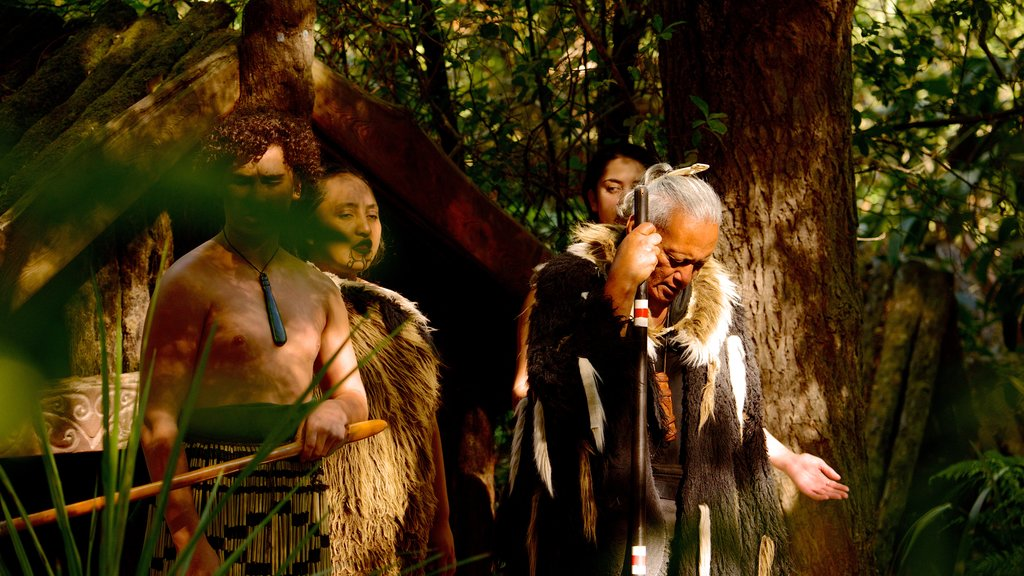Willowbank Wildlife Reserve showing indigenous culture as well as a small group of people