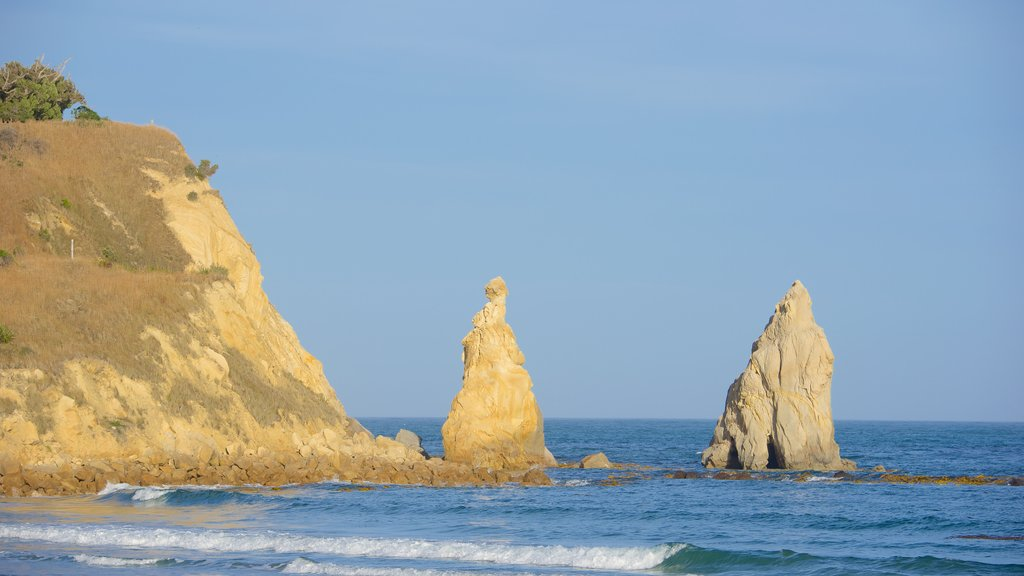 Dunedin showing rocky coastline