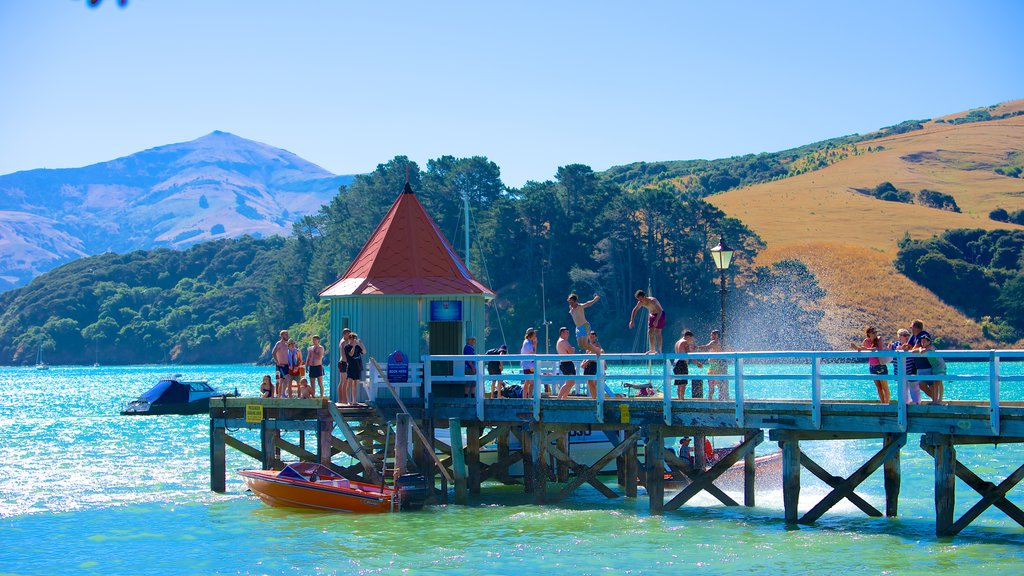 Akaroa showing swimming and general coastal views as well as a large group of people