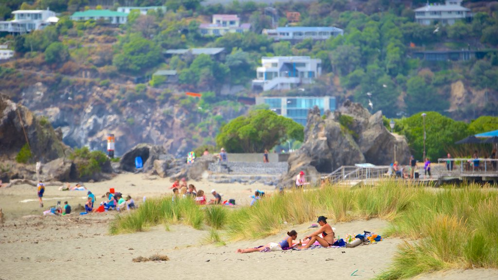 Sumner Beach featuring general coastal views as well as a large group of people