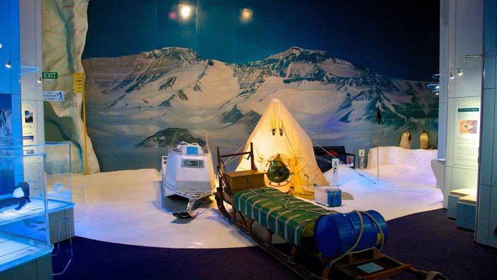 International Antarctic Centre showing interior views