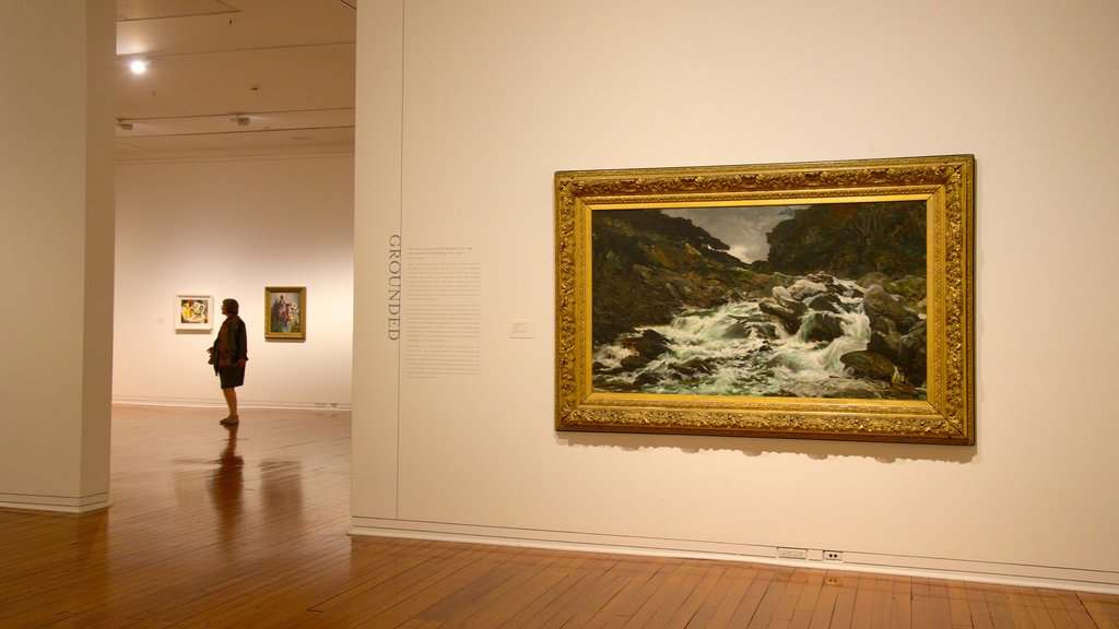 Dunedin Public Art Gallery mostrando vistas interiores y arte