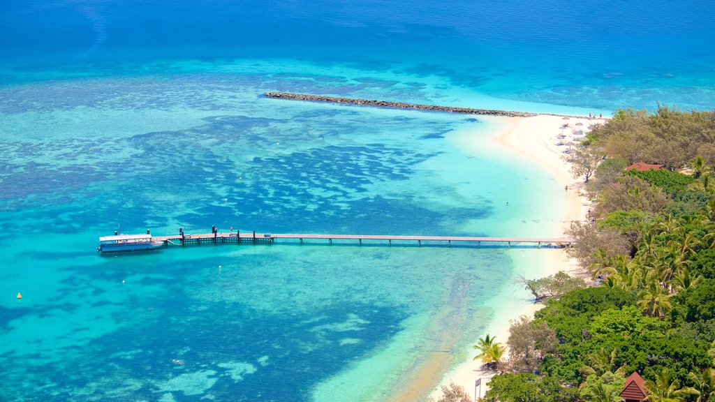 New Caledonia which includes colorful reefs and a beach