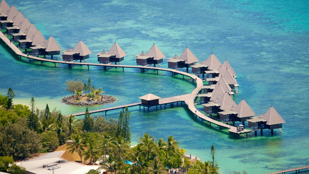 New Caledonia showing a luxury hotel or resort, general coastal views and coral